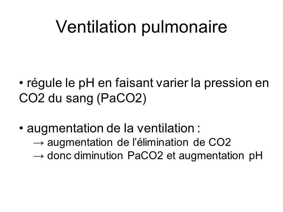 Ventilation pulmonaire régule le pH en faisant varier la pression en CO2 du sang (PaCO2) augmentation de la ventilation : augmentation de lélimination de CO2 donc diminution PaCO2 et augmentation pH