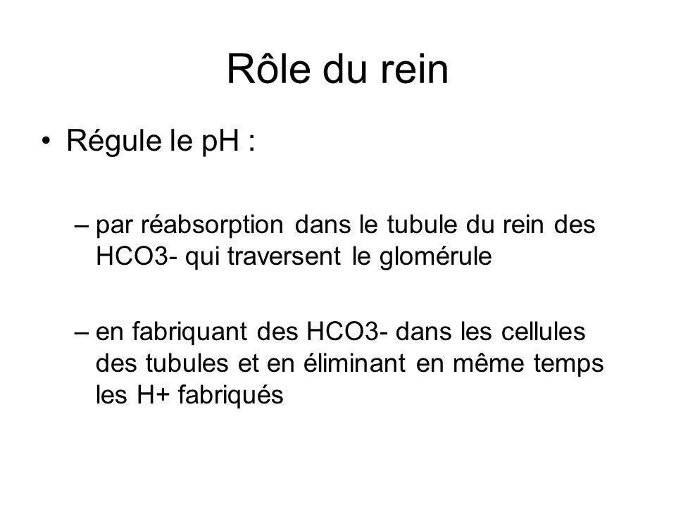 Rôle du rein Régule le pH : –par réabsorption dans le tubule du rein des HCO3- qui traversent le glomérule –en fabriquant des HCO3- dans les cellules des tubules et en éliminant en même temps les H+ fabriqués