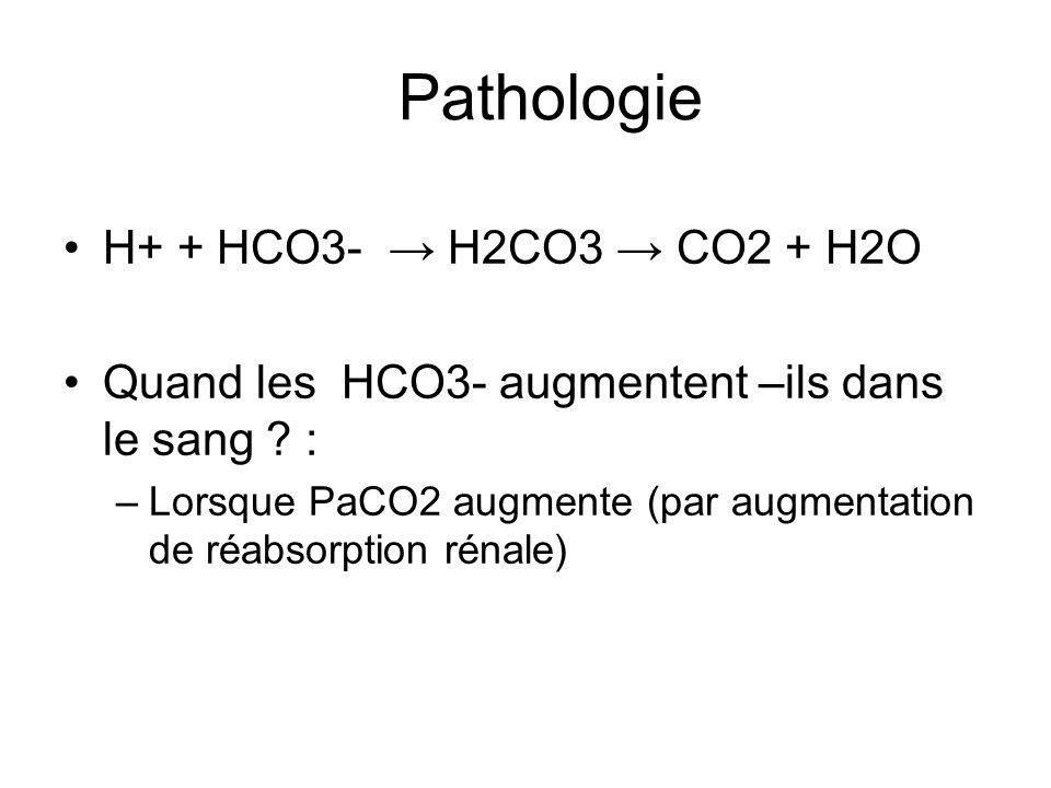 H+ + HCO3- H2CO3 CO2 + H2O Quand les HCO3- augmentent –ils dans le sang .