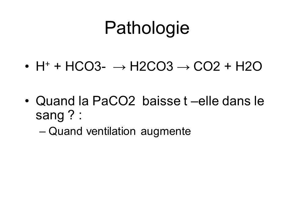 H + + HCO3- H2CO3 CO2 + H2O Quand la PaCO2 baisse t –elle dans le sang .