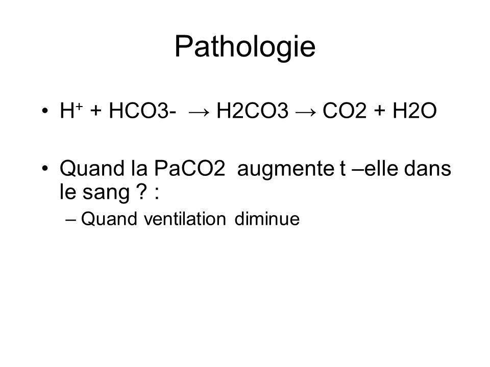 H + + HCO3- H2CO3 CO2 + H2O Quand la PaCO2 augmente t –elle dans le sang .