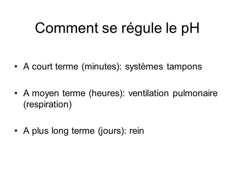 Comment se régule le pH A court terme (minutes): systèmes tampons A moyen terme (heures): ventilation pulmonaire (respiration) A plus long terme (jours): rein