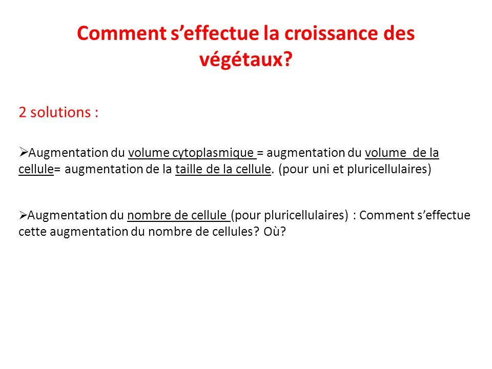 Comment seffectue la croissance des végétaux? 2 solutions : Augmentation du volume cytoplasmique = augmentation du volume de la cellule= augmentation