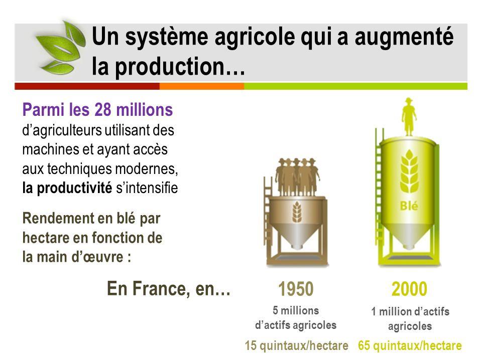 19502000 65 quintaux/hectare 15 quintaux/hectare 5 millions dactifs agricoles 1 million dactifs agricoles Parmi les 28 millions dagriculteurs utilisan