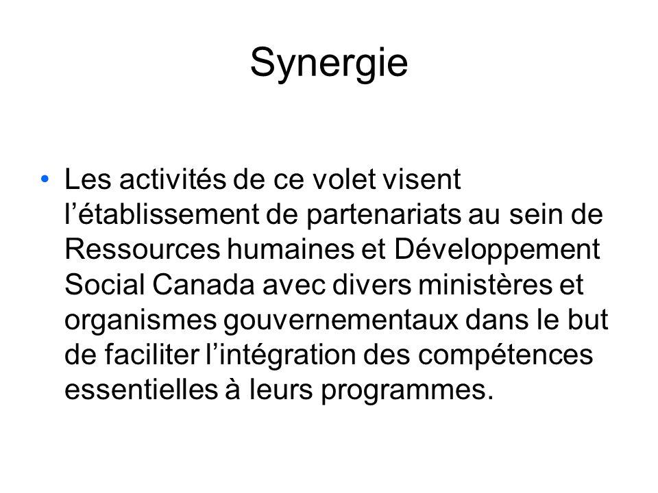 Synergie Les activités de ce volet visent létablissement de partenariats au sein de Ressources humaines et Développement Social Canada avec divers ministères et organismes gouvernementaux dans le but de faciliter lintégration des compétences essentielles à leurs programmes.