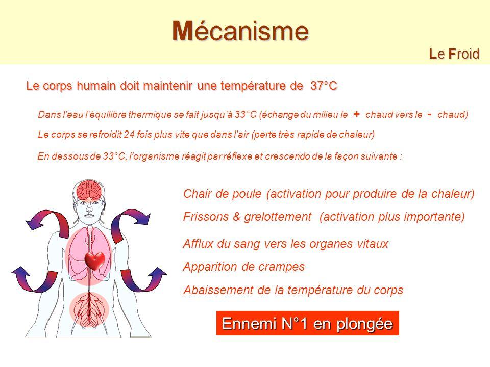 Le Froid en plongée - Mécanisme - Que faire ? & Prévention