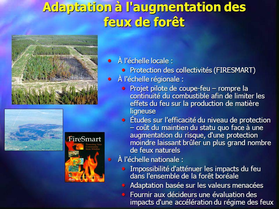 Adaptation à l'augmentation des feux de forêt À l'échelle locale : À l'échelle locale : Protection des collectivités (FIRESMART) Protection des collec