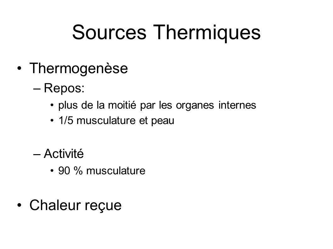 Sources Thermiques Thermogenèse –Repos: plus de la moitié par les organes internes 1/5 musculature et peau –Activité 90 % musculature Chaleur reçue