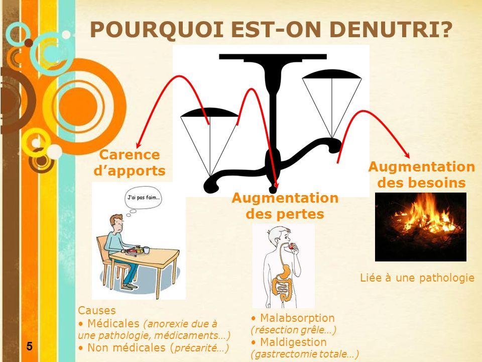6 DENUTRITION QUELLES SONT LES CONSEQUENCES DE LA DENUTRITION.