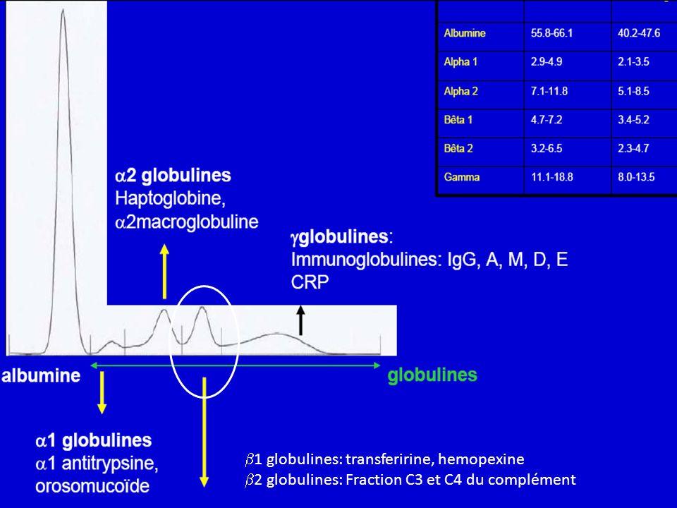 1 globulines: transferirine, hemopexine 2 globulines: Fraction C3 et C4 du complément