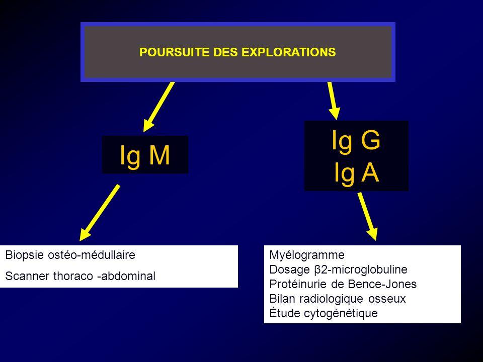 Ig M Ig G Ig A Biopsie ostéo-médullaire Scanner thoraco -abdominal Myélogramme Dosage β2-microglobuline Protéinurie de Bence-Jones Bilan radiologique osseux Étude cytogénétique POURSUITE DES EXPLORATIONS