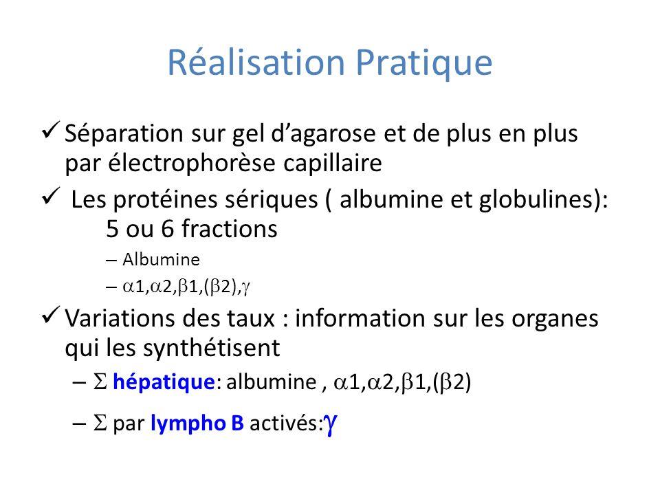 Réalisation Pratique Séparation sur gel dagarose et de plus en plus par électrophorèse capillaire Les protéines sériques ( albumine et globulines): 5