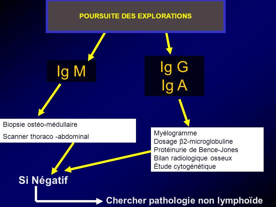 Ig M Ig G Ig A Biopsie ostéo-médullaire Scanner thoraco -abdominal Myélogramme Dosage β2-microglobuline Protéinurie de Bence-Jones Bilan radiologique