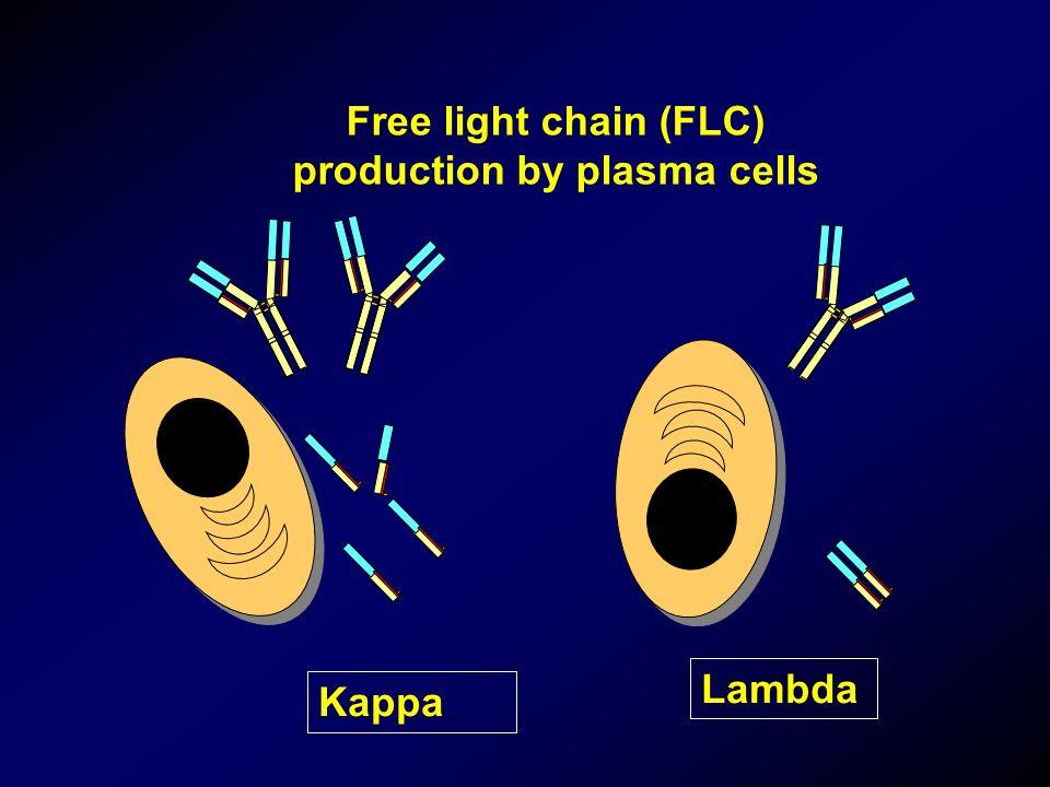Free light chain (FLC) production by plasma cells Kappa Lambda