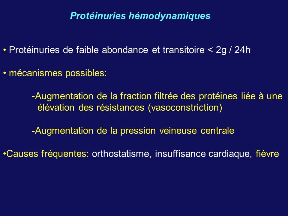 Protéinuries hémodynamiques Protéinuries de faible abondance et transitoire < 2g / 24h mécanismes possibles: -Augmentation de la fraction filtrée des