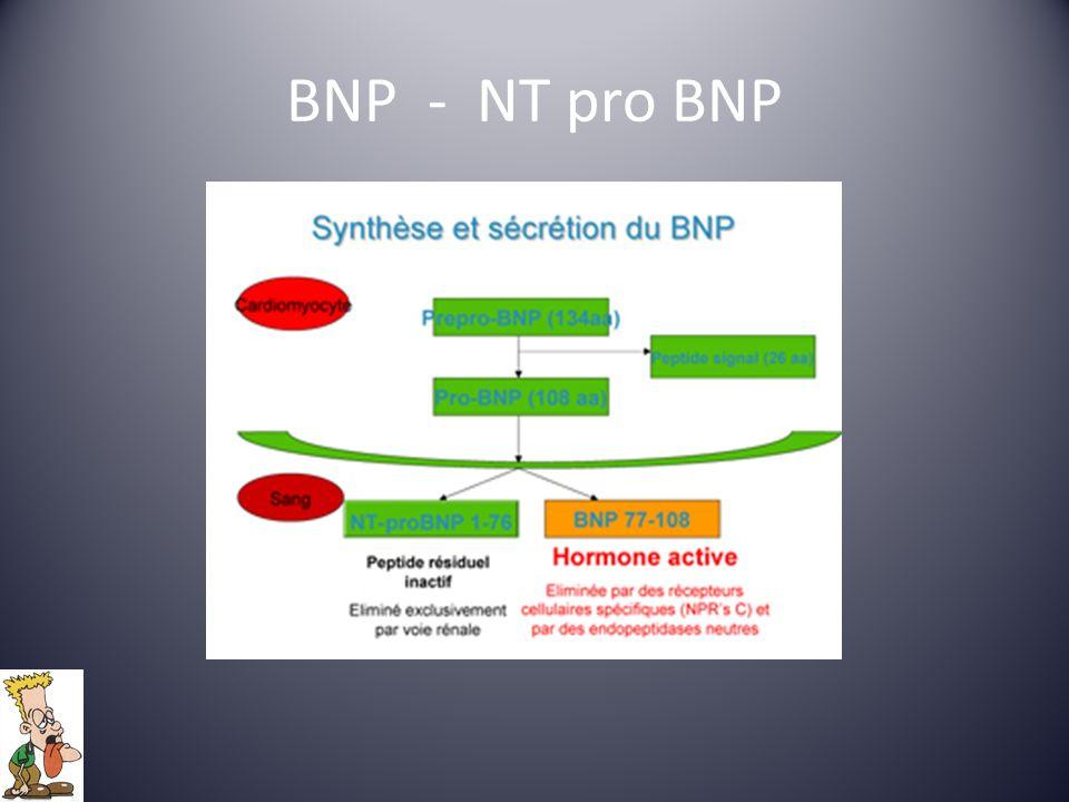 BNP - NT pro BNP
