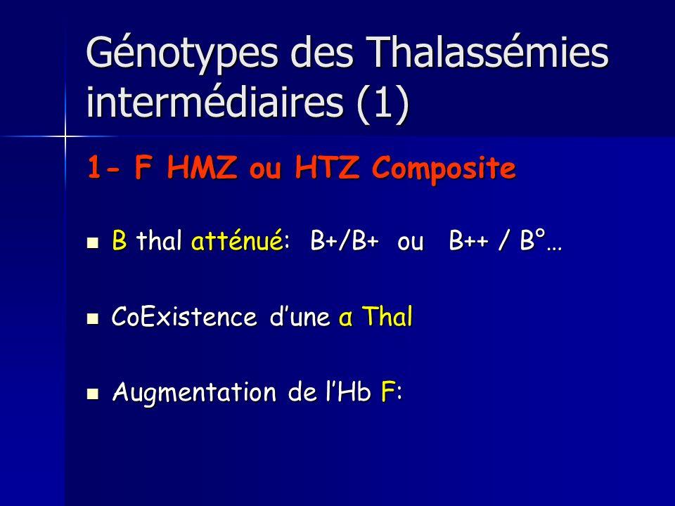Génotypes des Thalassémies intermédiaires (1) 1- F HMZ ou HTZ Composite B thal atténué: B+/B+ ou B++ / B°… B thal atténué: B+/B+ ou B++ / B°… CoExistence dune α Thal CoExistence dune α Thal Augmentation de lHb F: Augmentation de lHb F: