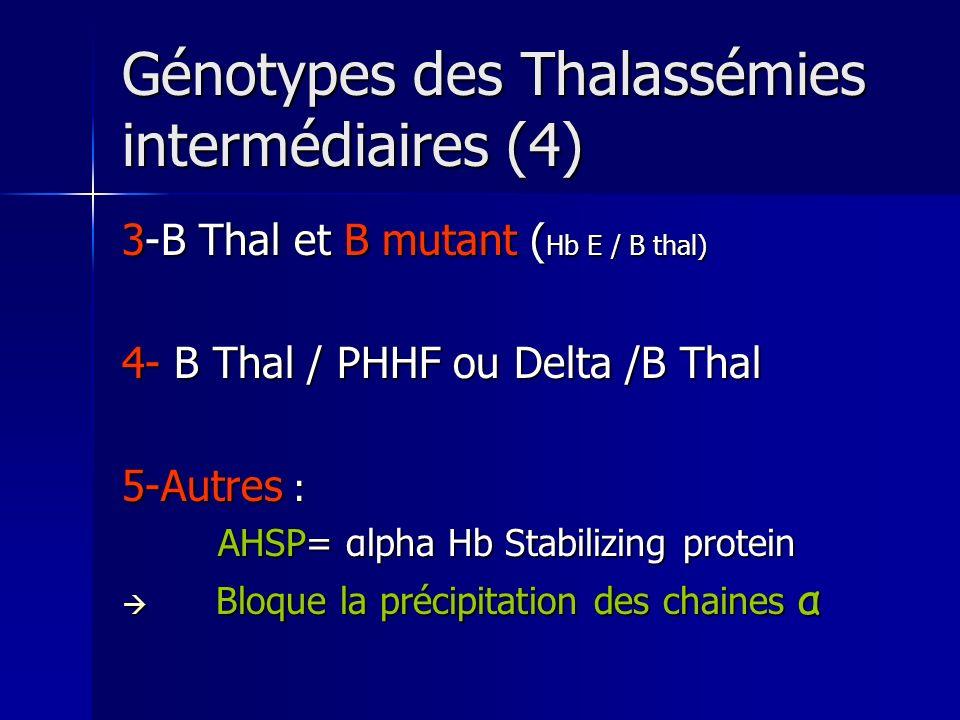 Génotypes des Thalassémies intermédiaires (4) 3-B Thal et B mutant ( Hb E / B thal) 4- B Thal / PHHF ou Delta /B Thal 5-Autres : AHSP= αlpha Hb Stabil