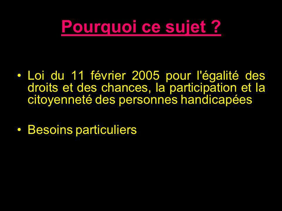 Pourquoi ce sujet ? Loi du 11 février 2005 pour l'égalité des droits et des chances, la participation et la citoyenneté des personnes handicapées Beso