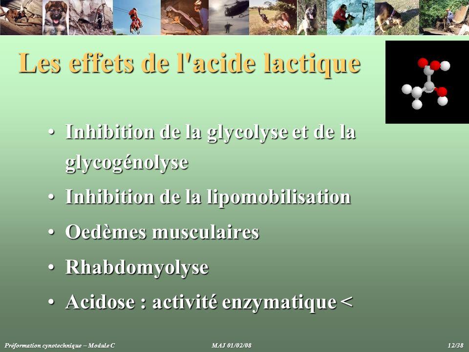 Les effets de l'acide lactique Inhibition de la glycolyse et de la glycogénolyseInhibition de la glycolyse et de la glycogénolyse Inhibition de la lip