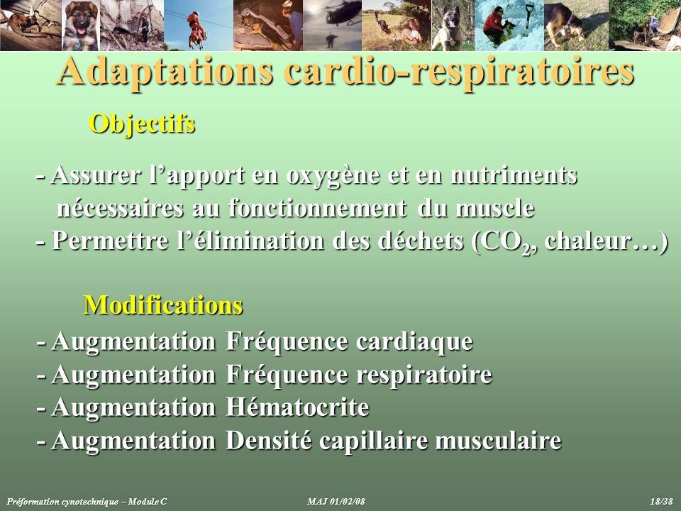 Adaptations cardio-respiratoires Objectifs - Assurer lapport en oxygène et en nutriments nécessaires au fonctionnement du muscle - Permettre léliminat