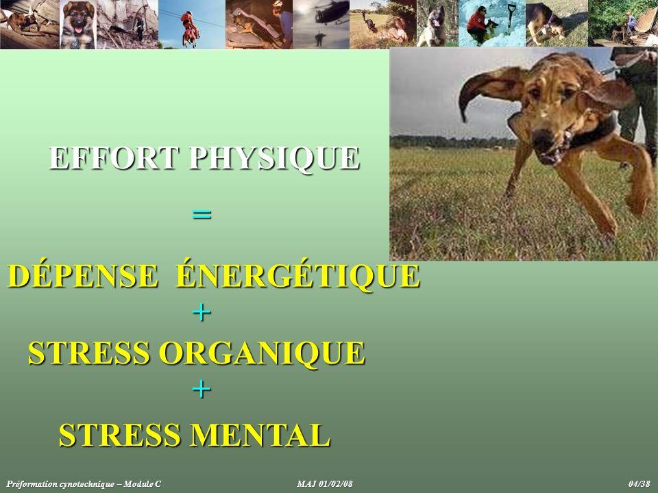 DÉPENSE ÉNERGÉTIQUE STRESS ORGANIQUE STRESS MENTAL EFFORT PHYSIQUE + + = Préformation cynotechnique – Module C MAJ 01/02/08 04/38
