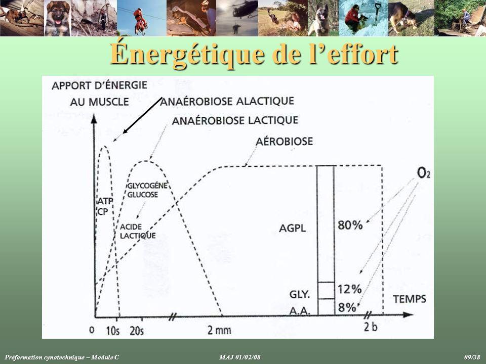 Énergétique de leffort Préformation cynotechnique – Module C MAJ 01/02/08 09/38