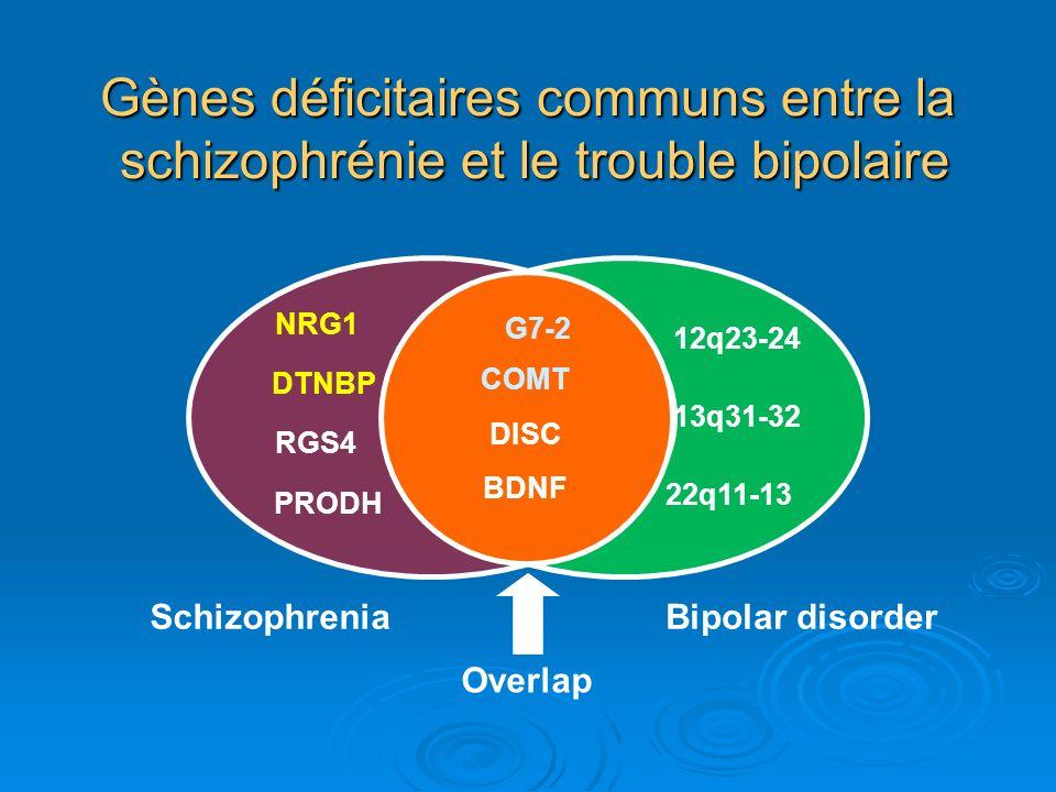 Gènes déficitaires communs entre la schizophrénie et le trouble bipolaire SchizophreniaBipolar disorder 12q23-24 22q11-13 13q31-32 Overlap G7-2 DISC C