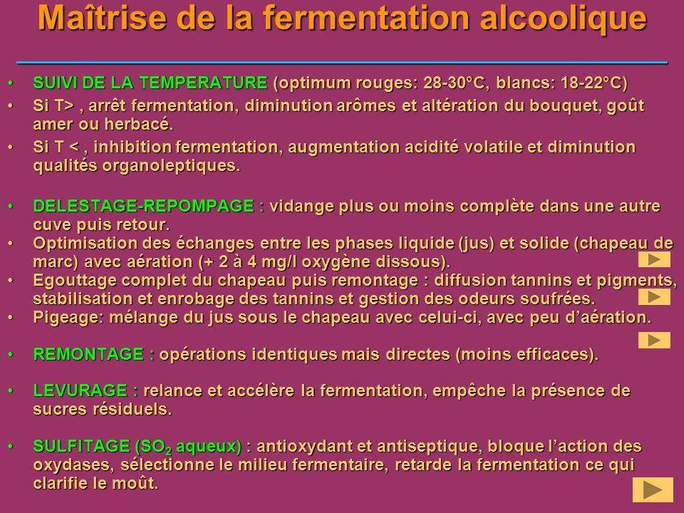 Maîtrise de la fermentation alcoolique ___________________________________________________ SUIVI DE LA TEMPERATURE (optimum rouges: 28-30°C, blancs: 1