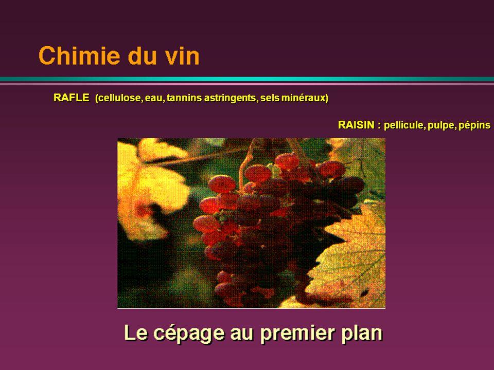 RAFLE (cellulose, eau, tannins astringents, sels minéraux) RAISIN : pellicule, pulpe, pépins