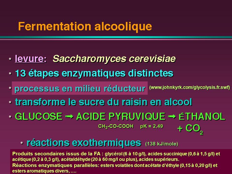 Stoechiométrie et thermochimie de la fermentation alcoolique ___________________________________________________ EVALUATION DU TAUX DALCOOL PROBABLE EVALUATION DU TAUX DALCOOL PROBABLE C 6 H 12 O 6 ~ 175 g/l de glucose+fructose (~ 1 mol/l) 138 KJ/mol C 6 H 12 O 6 ~ 175 g/l de glucose+fructose (~ 1 mol/l) 138 KJ/mol 2 C 2 H 5 OH ~ 10% vol.