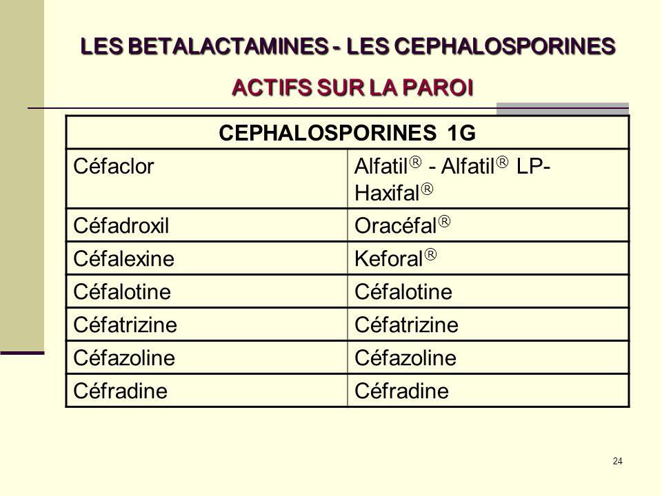 24 LES BETALACTAMINES - LES CEPHALOSPORINES ACTIFS SUR LA PAROI CEPHALOSPORINES 1G CéfaclorAlfatil ® - Alfatil ® LP- Haxifal ® CéfadroxilOracéfal ® CéfalexineKeforal ® Céfalotine Céfatrizine Céfazoline Céfradine