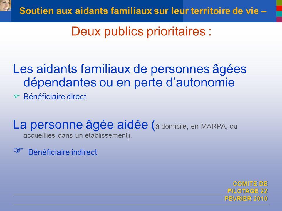 COMITE DE PILOTAGE 22 FEVRIER 2010 Soutien aux aidants familiaux sur leur territoire de vie – Deux publics prioritaires : Les aidants familiaux de per