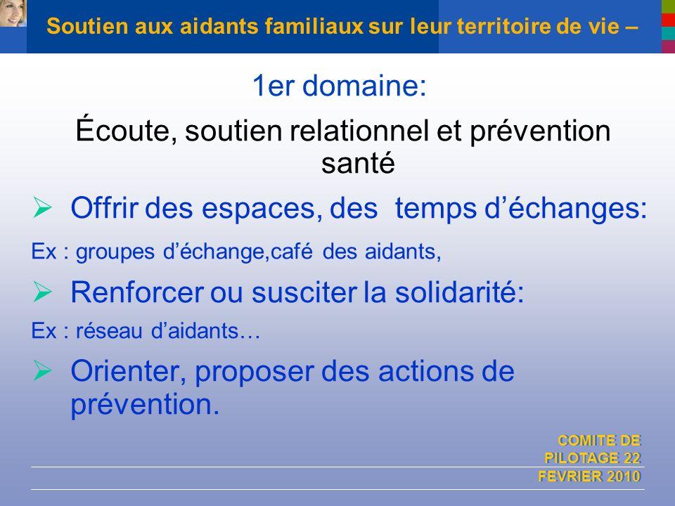COMITE DE PILOTAGE 22 FEVRIER 2010 Soutien aux aidants familiaux sur leur territoire de vie – 1er domaine: Écoute, soutien relationnel et prévention s