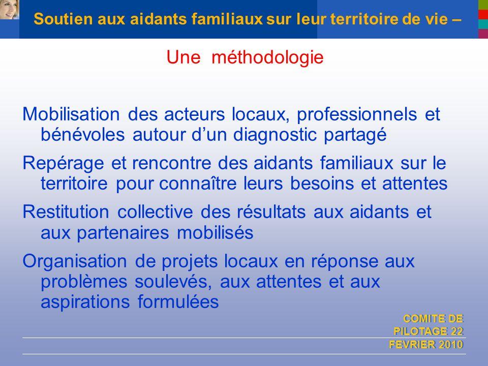 COMITE DE PILOTAGE 22 FEVRIER 2010 Soutien aux aidants familiaux sur leur territoire de vie – Une méthodologie Mobilisation des acteurs locaux, profes