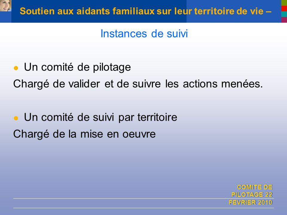 COMITE DE PILOTAGE 22 FEVRIER 2010 Soutien aux aidants familiaux sur leur territoire de vie – Instances de suivi Un comité de pilotage Chargé de valid
