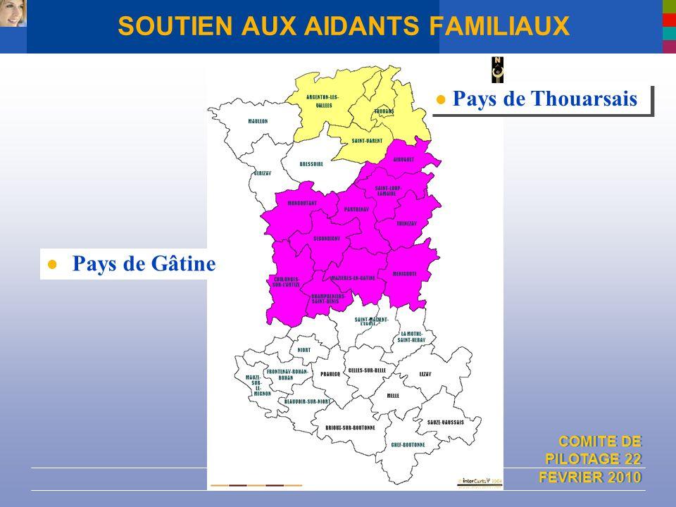 COMITE DE PILOTAGE 22 FEVRIER 2010 SOUTIEN AUX AIDANTS FAMILIAUX Pays de Gâtine Pays de Thouarsais