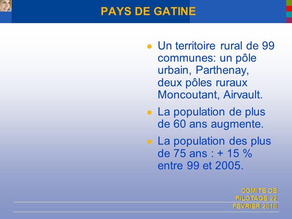 COMITE DE PILOTAGE 22 FEVRIER 2010 PAYS DE GATINE Un territoire rural de 99 communes: un pôle urbain, Parthenay, deux pôles ruraux Moncoutant, Airvaul