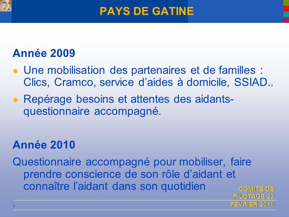 COMITE DE PILOTAGE 22 FEVRIER 2010 PAYS DE GATINE Année 2009 Une mobilisation des partenaires et de familles : Clics, Cramco, service daides à domicil