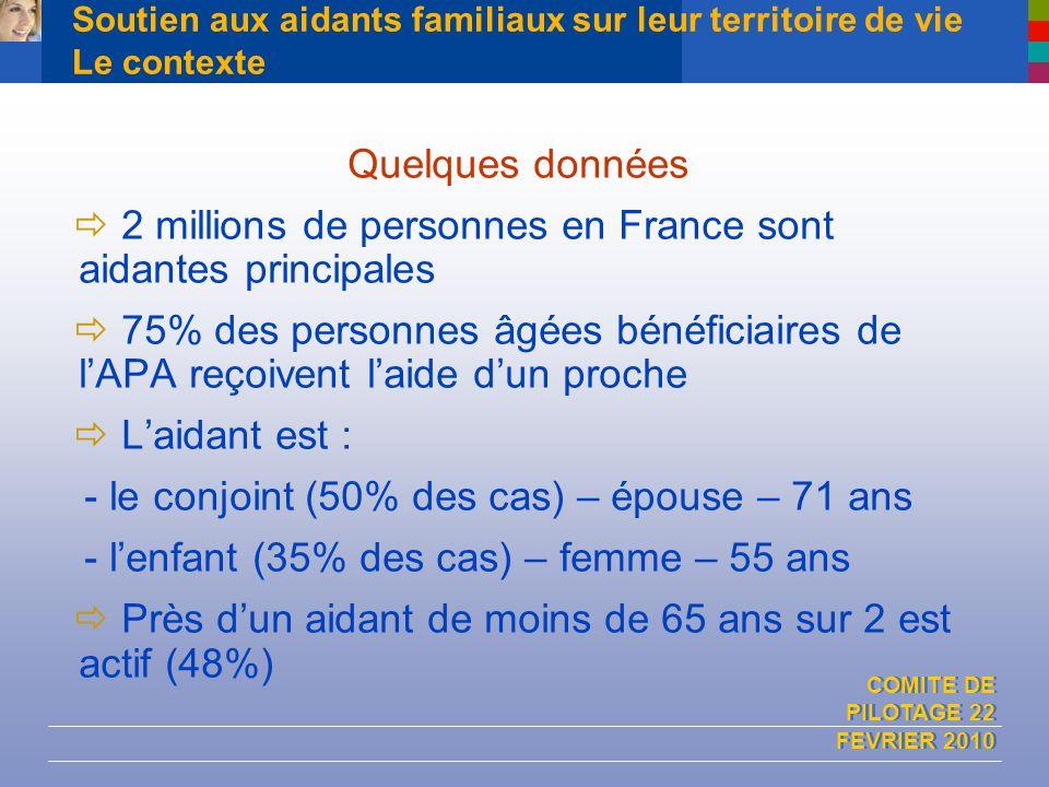 COMITE DE PILOTAGE 22 FEVRIER 2010 Soutien aux aidants familiaux sur leur territoire de vie Le contexte Quelques données 2 millions de personnes en Fr