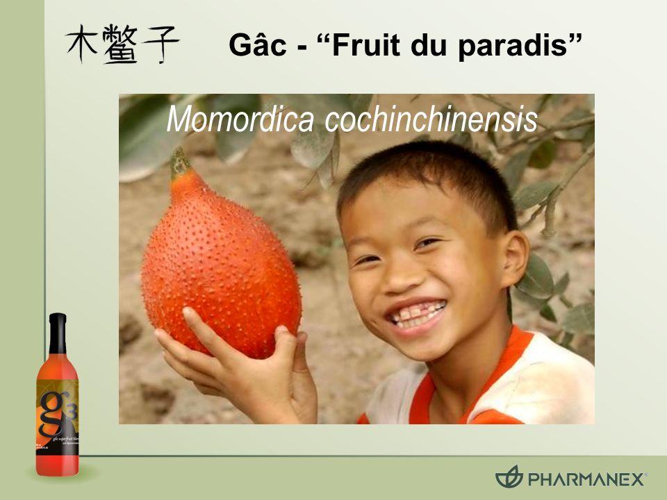 Un article scientifique approuvé par comité de lecture « Current Topics in Nutraceutical Research », Novembre 2005 présente les bienfaits des superfruits du g3