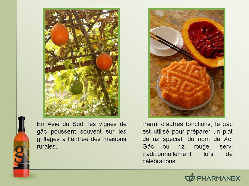 Le gâc contient des lycopènes, des bêta- carotènes et des vitamines E, reconnus comme antioxydants bénéfiques.