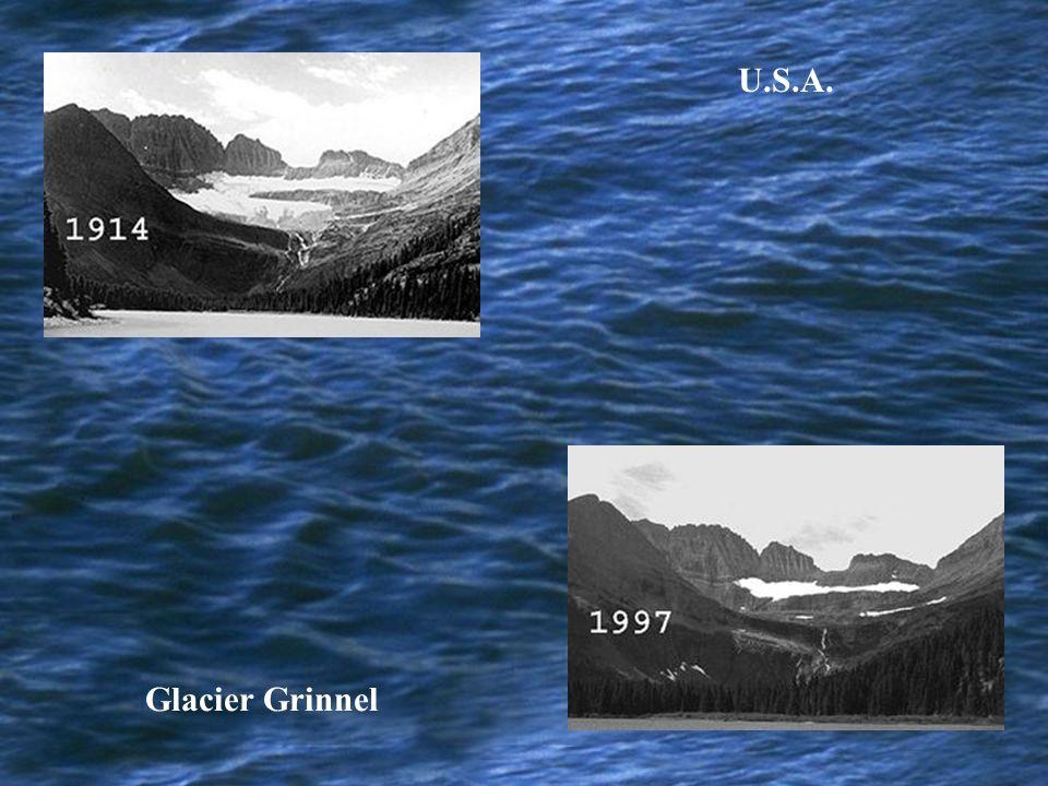 U.S.A. Glacier Grinnel