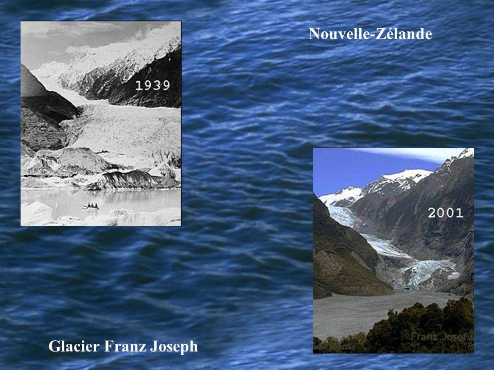 Nouvelle-Zélande Glacier Franz Joseph
