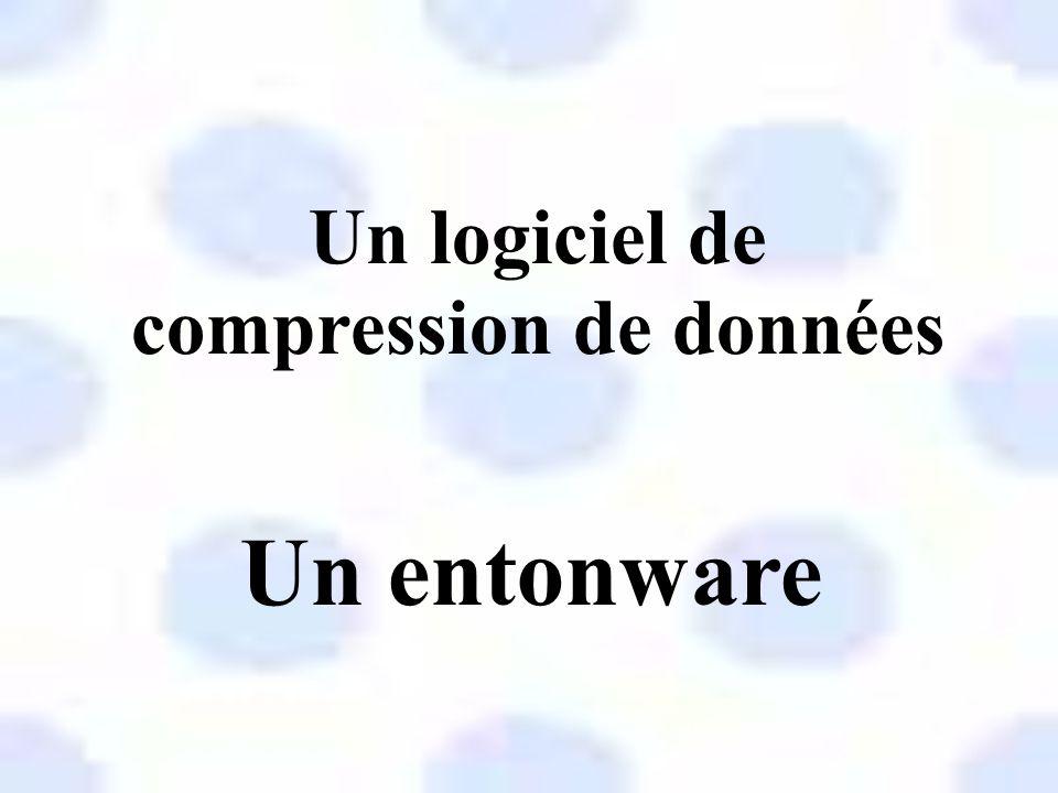 Un logiciel de vote électronique Un isolware