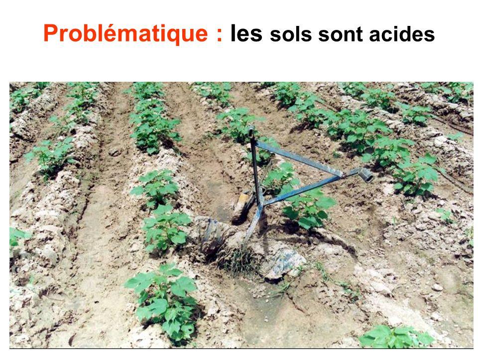Problématique : les sols sont acides