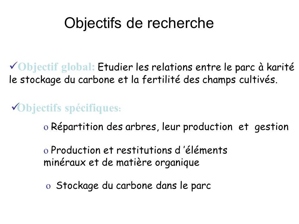 Objectifs de recherche Objectif global: Etudier les relations entre le parc à karité le stockage du carbone et la fertilité des champs cultivés.
