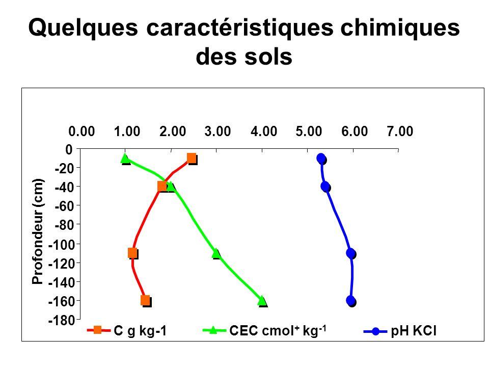 Quelques caractéristiques chimiques des sols -180 -160 -140 -120 -100 -80 -60 -40 -20 0 0.001.002.003.004.005.006.007.00 Profondeur (cm) pH KClCEC cmol + kg -1 C g kg-1