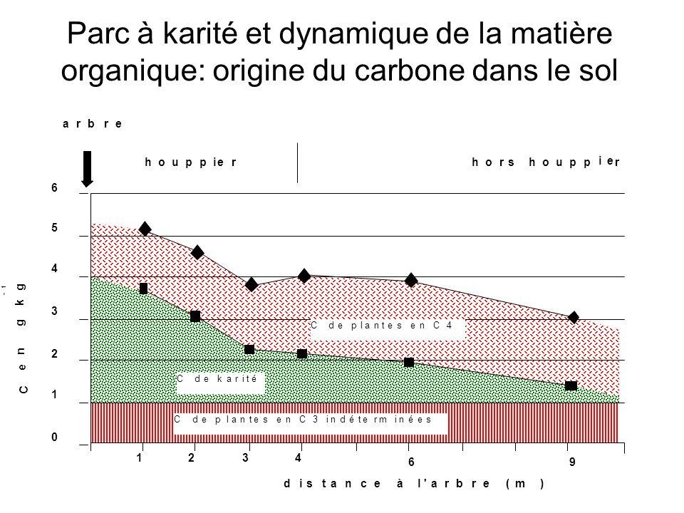 Parc à karité et dynamique de la matière organique: origine du carbone dans le sol - 1