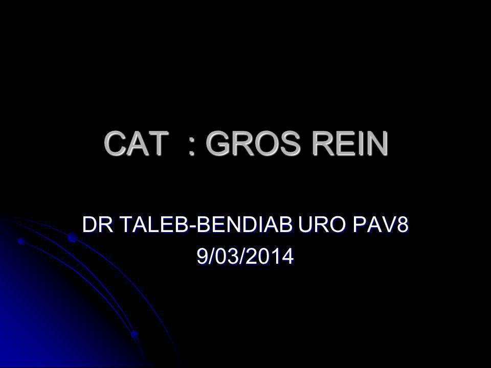 CAT : GROS REIN DR TALEB-BENDIAB URO PAV8 9/03/2014